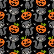 Halloween Witch Cat Pumpkins Stars