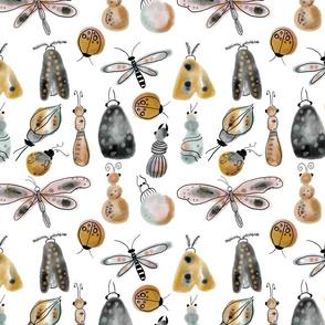 busy bugs (medium)
