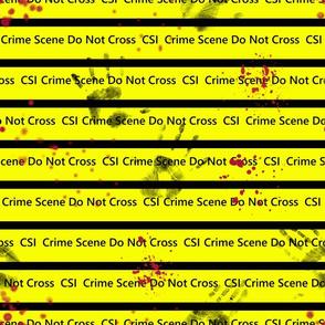 CSI Nr. 1