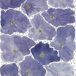Flowerbed - Blueberry