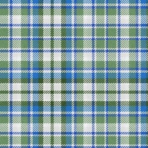 Plaid in Soft Greens and Sky Blues