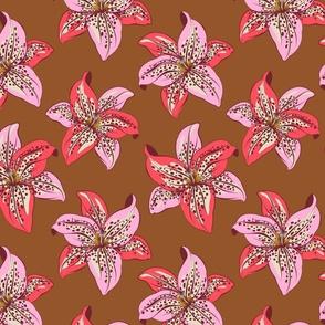 Pinwheel Lily- Caramel