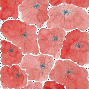 Flowerbed - Tomato