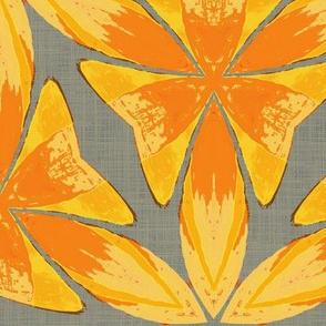 Superkaleider - daylily