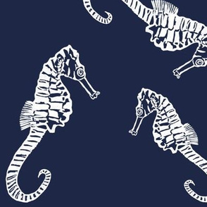 Seahorses on Navy