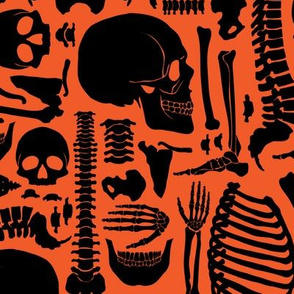 Halloween Skeleton Pattern Black and Ornage-01