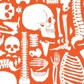 Halloween Skeleton Pattern Orange and White-01-01