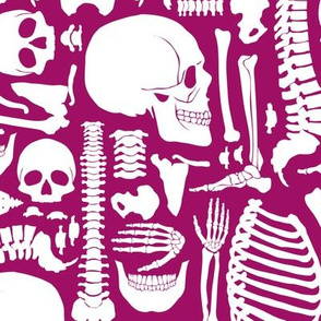 Halloween Skeleton Pattern Pink and White-01