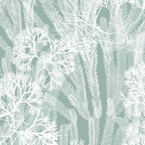Sea Weeds White on Sea Green 150