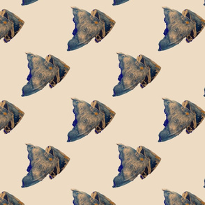 Angel fish on a cream background