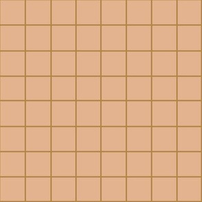 RUST GRID ON PEACH