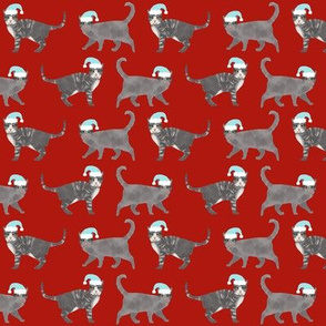 grey tabby christmas cat fabric - santa paws fabric, christmas cat fabric, cute cat design