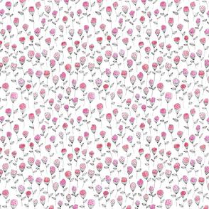 flower white background pink smallest