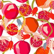 Psychodelic Pomegranates  (SF02)