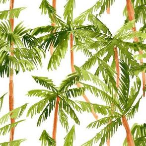 Watercolor Palm trees white medium