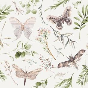 Botanical Gardens // Cararra