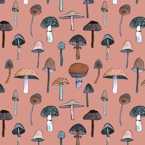 mushroom roze
