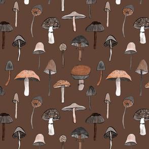 mushroom brown small