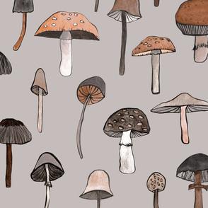 mushroom grey