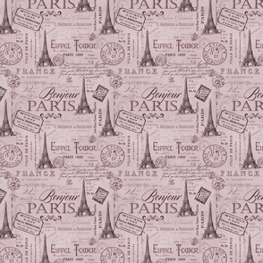 Vintage Paris Pattern