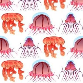 3 deep sea jellyfish