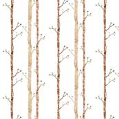 Woodland trees- sparce