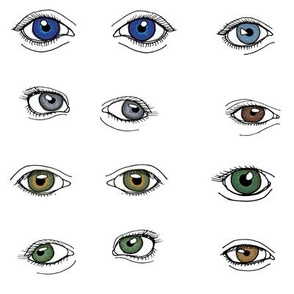 Eyes for Quilting - Large - Mixed Colours