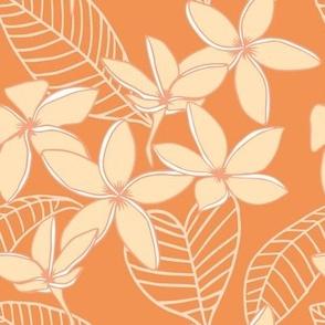 plumerias on orange dream