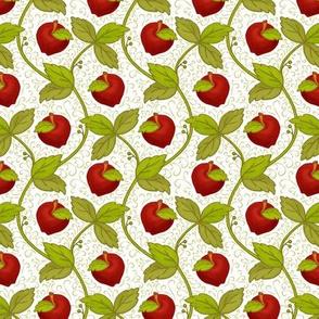 Once upon an apple_Bg White