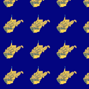 West Virginia Floral Yellow Navy