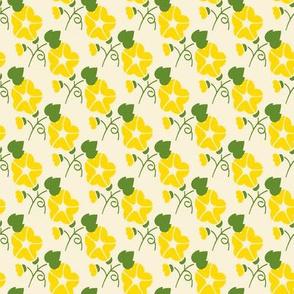 Yellow Morning Glories on Cream