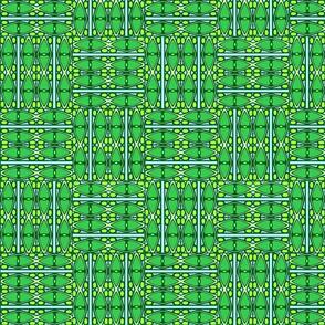 green paua