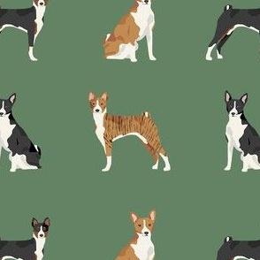 basenji dog fabric - black basenji dog, brindle basenji, basenji fabric, dog fabric, dogs fabric, cute dog, pet - green
