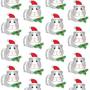 small guinea pigs with santa hats and holly