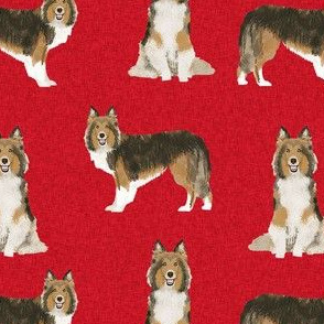 sheltie dog fabric - shetland sheepdog fabric, dog fabric, dog breed fabric -red