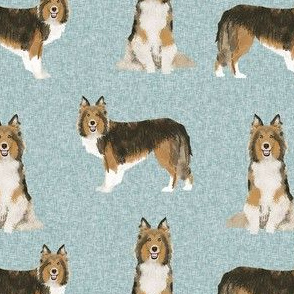 sheltie dog fabric - shetland sheepdog fabric, dog fabric, dog breed fabric - blue
