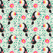 Cheeky Toucan