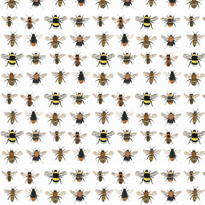 Large // I'm going on a bee hunt