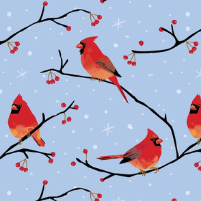 Cardinals pale blue