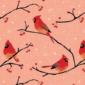 Cardinals peach 1625