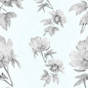 BlueGreen sketched peonies BW1 psd