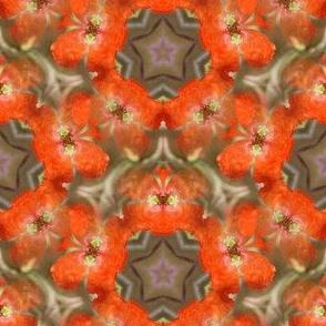 Kaleidoskope-Nr. 4