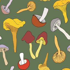 Wild Mushroom Toss in Dill
