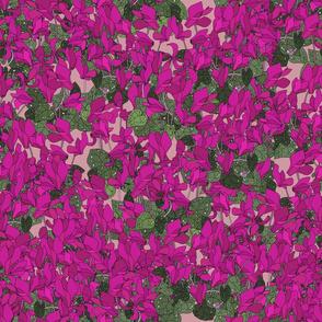 Cyclamen on dusky pink