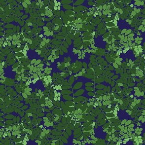 Moringa in Blue