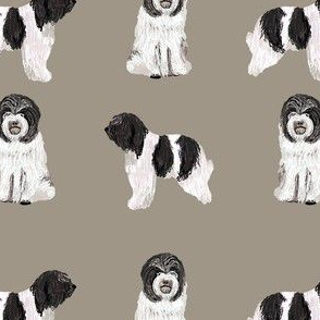 schapendoes fabric - dutch sheepdog fabric, dog fabric, dog breeds fabric - khaki