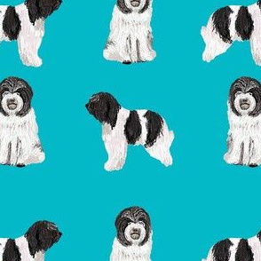 schapendoes fabric - dutch sheepdog fabric, dog fabric, dog breeds fabric - teal