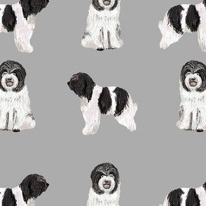 schapendoes fabric - dutch sheepdog fabric, dog fabric, dog breeds fabric - grey