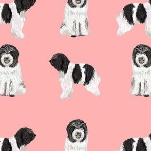 schapendoes fabric - dutch sheepdog fabric, dog fabric, dog breeds fabric - pink