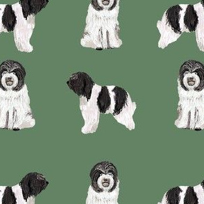 schapendoes fabric - dutch sheepdog fabric, dog fabric, dog breeds fabric - green